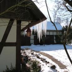 Spreewaldidylle im Winter