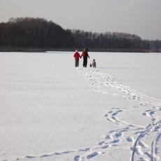 Eis und Schnee am Köthener Se